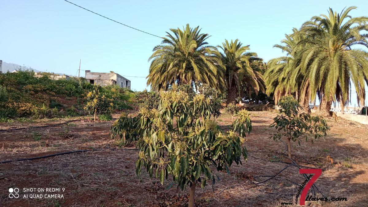 For sale of house in Breña Alta