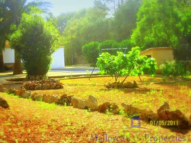 For sale of rural property in Sencelles