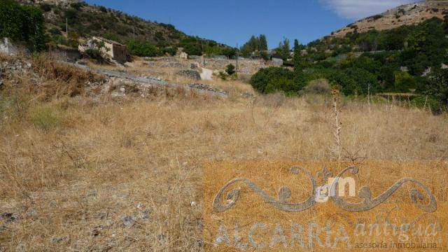 For sale of land in Pastrana