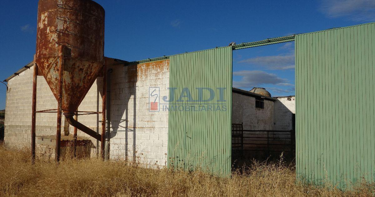 Venta de finca rústica en Valdepeñas