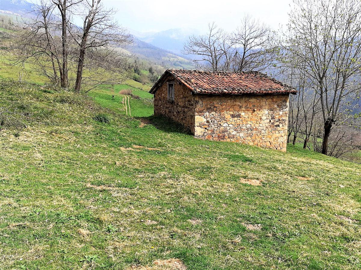 For sale of rural property in Quirós