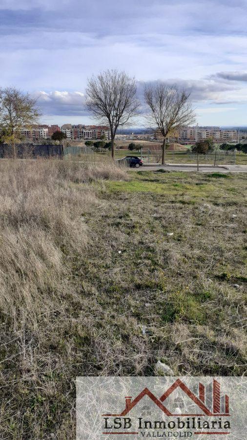 For sale of land in Arroyo de la Encomienda