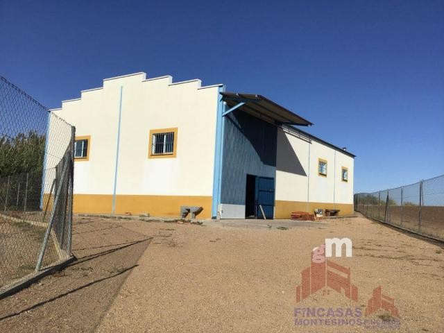 For rent of industrial plant/warehouse in Villanueva de la Serena
