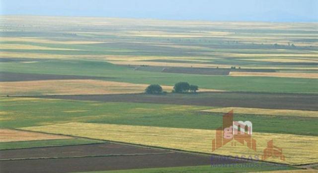 For sale of land in Villanueva de la Serena