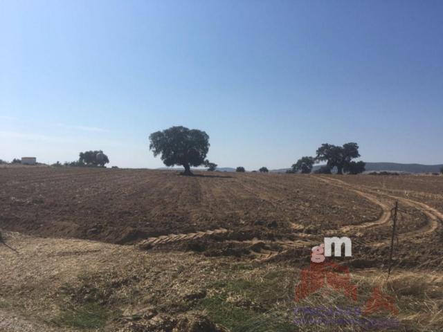 Venta de terreno en Quintana de la Serena