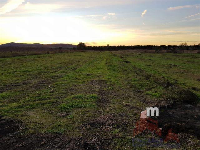 Venta de terreno en Almoharín
