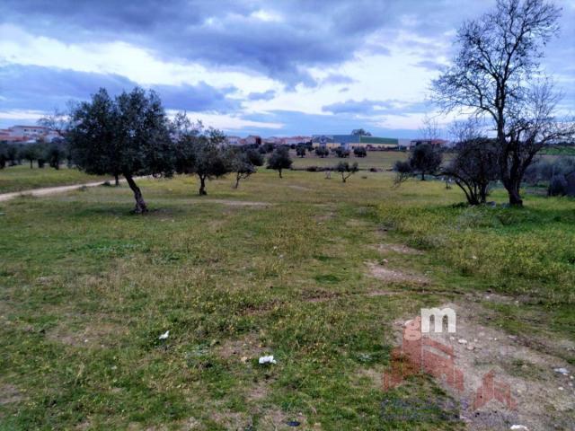 For sale of land in Quintana de la Serena