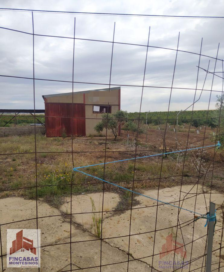 For sale of land in Don Benito