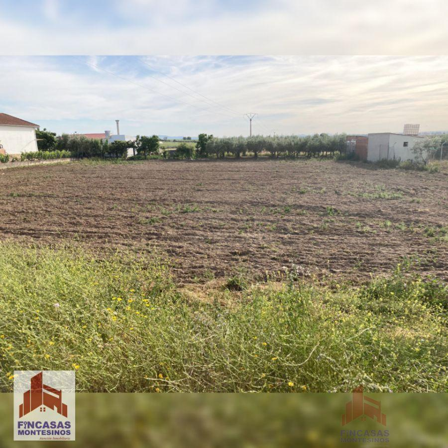 For sale of land in Mengabril