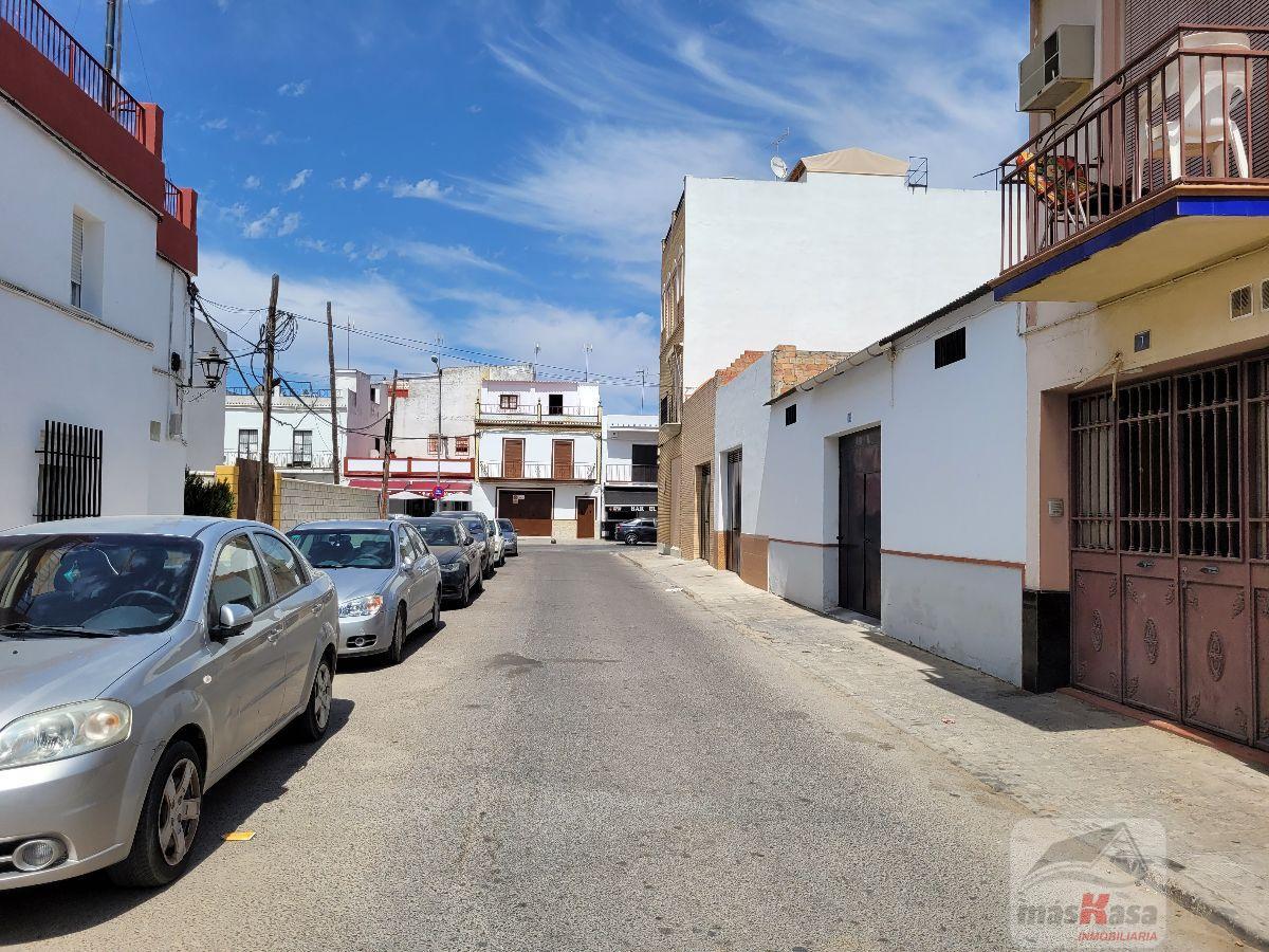 For sale of land in Los Palacios y Villafranca
