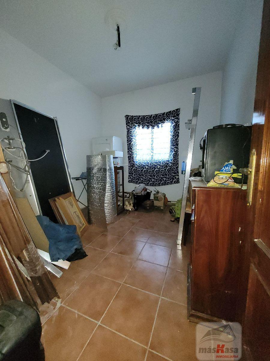 Venta de finca rústica en Los Palacios y Villafranca
