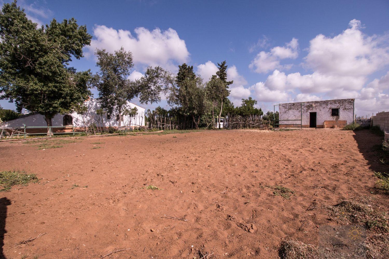 For sale of rural property in Morón de la Frontera