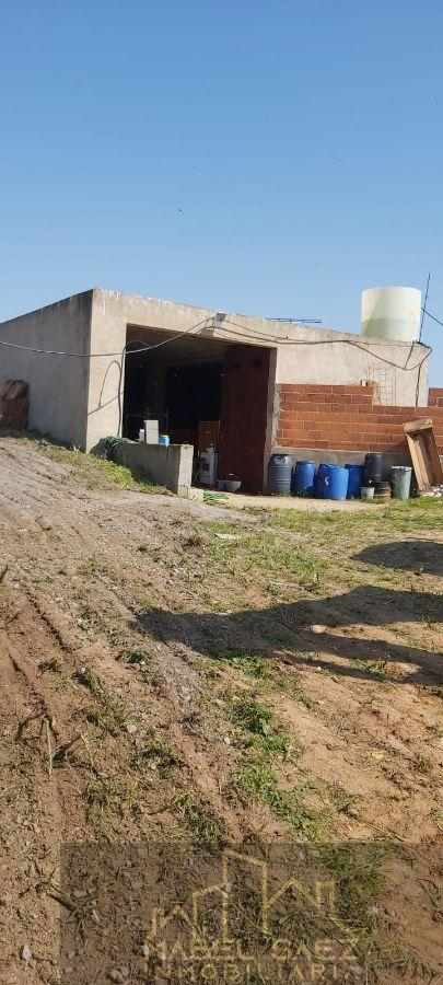 Venta de finca rústica en La Garrovilla