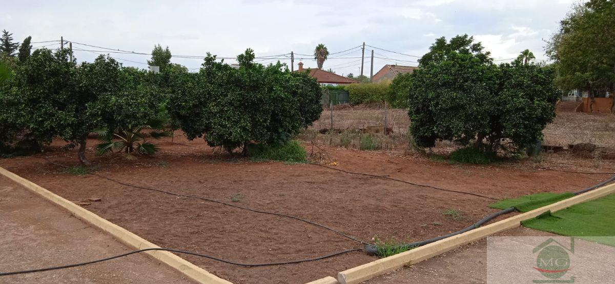 For sale of land in Dos Hermanas