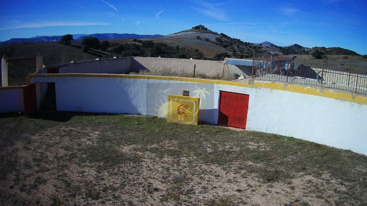 Venta de finca rústica en Chirivel