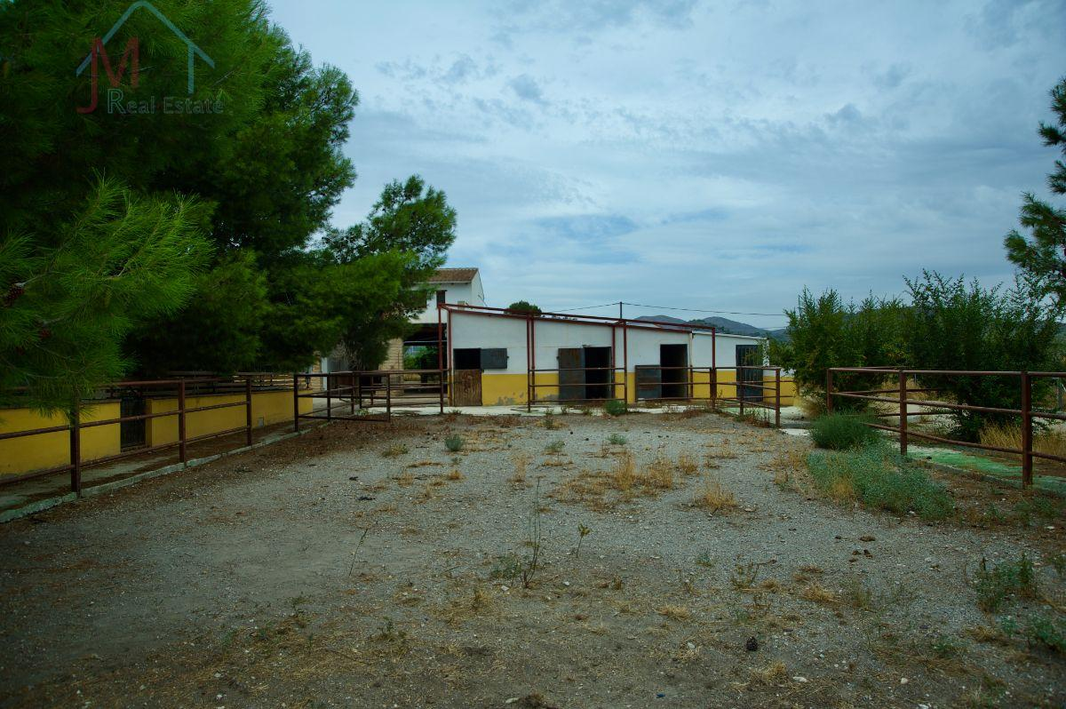 For sale of rural property in Abanilla
