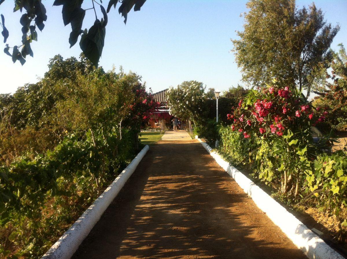 Venta de chalet en San Fernando