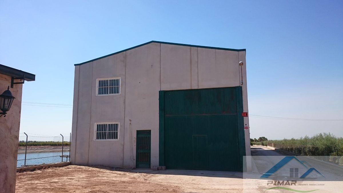 For rent of industrial plant/warehouse in Elche-Elx