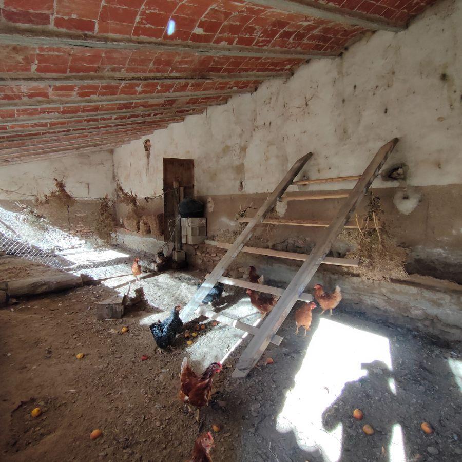 Venta de finca rústica en Caudete