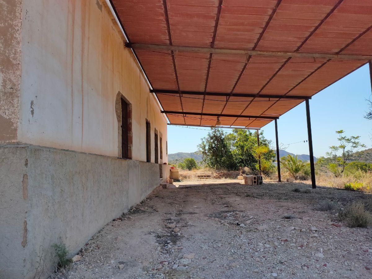 For sale of rural property in Novelda