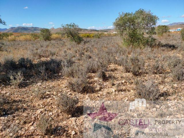 For sale of land in Algueña