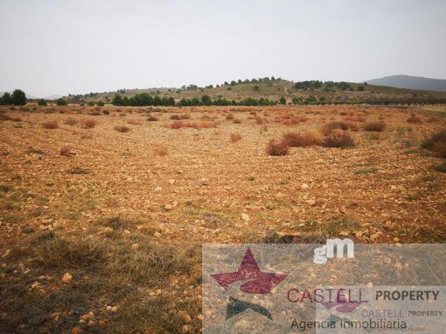 For sale of land in Hondón de las Nieves