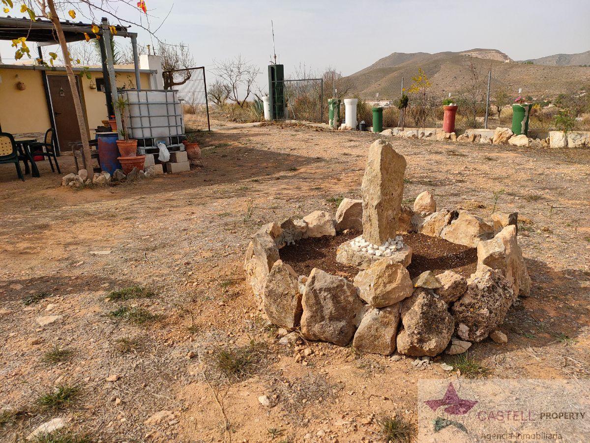 Venta de finca rústica en Hondón de los Frailes