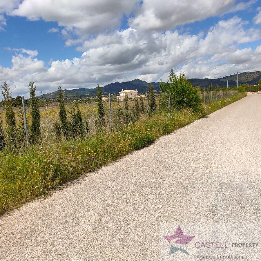 For sale of land in El Pinós