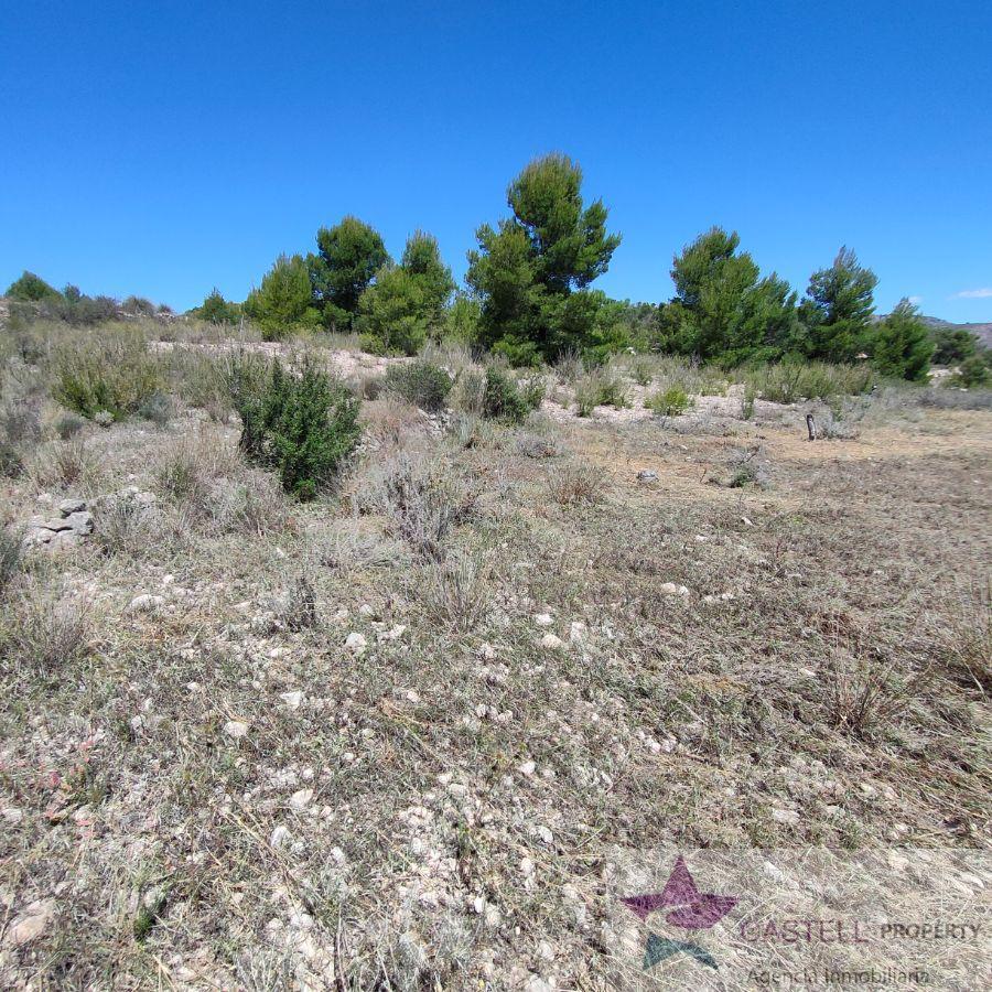 For sale of rural property in La Romana