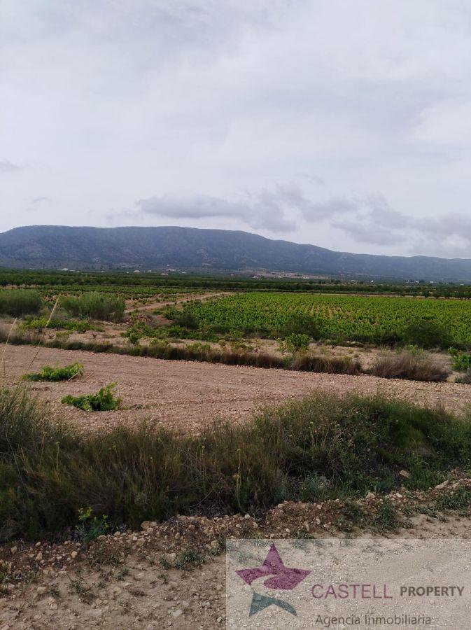 Venta de chalet en El Pinós