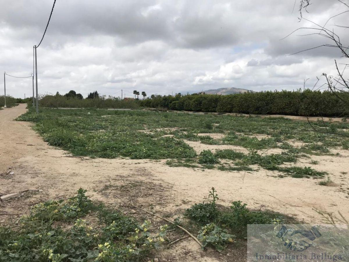 For sale of land in Librilla