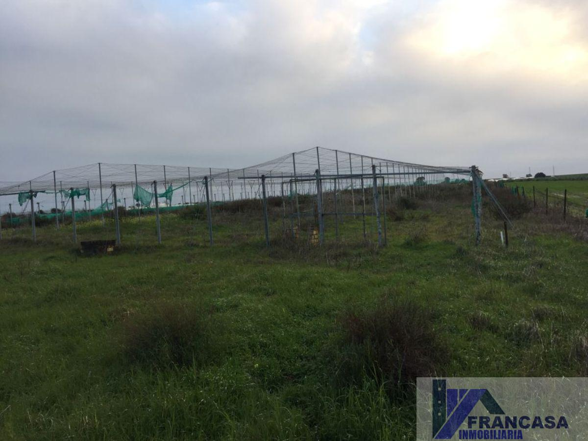 For sale of land in Rota