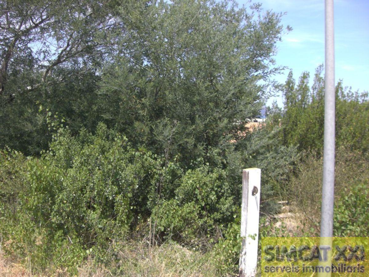 For sale of land in Llançà