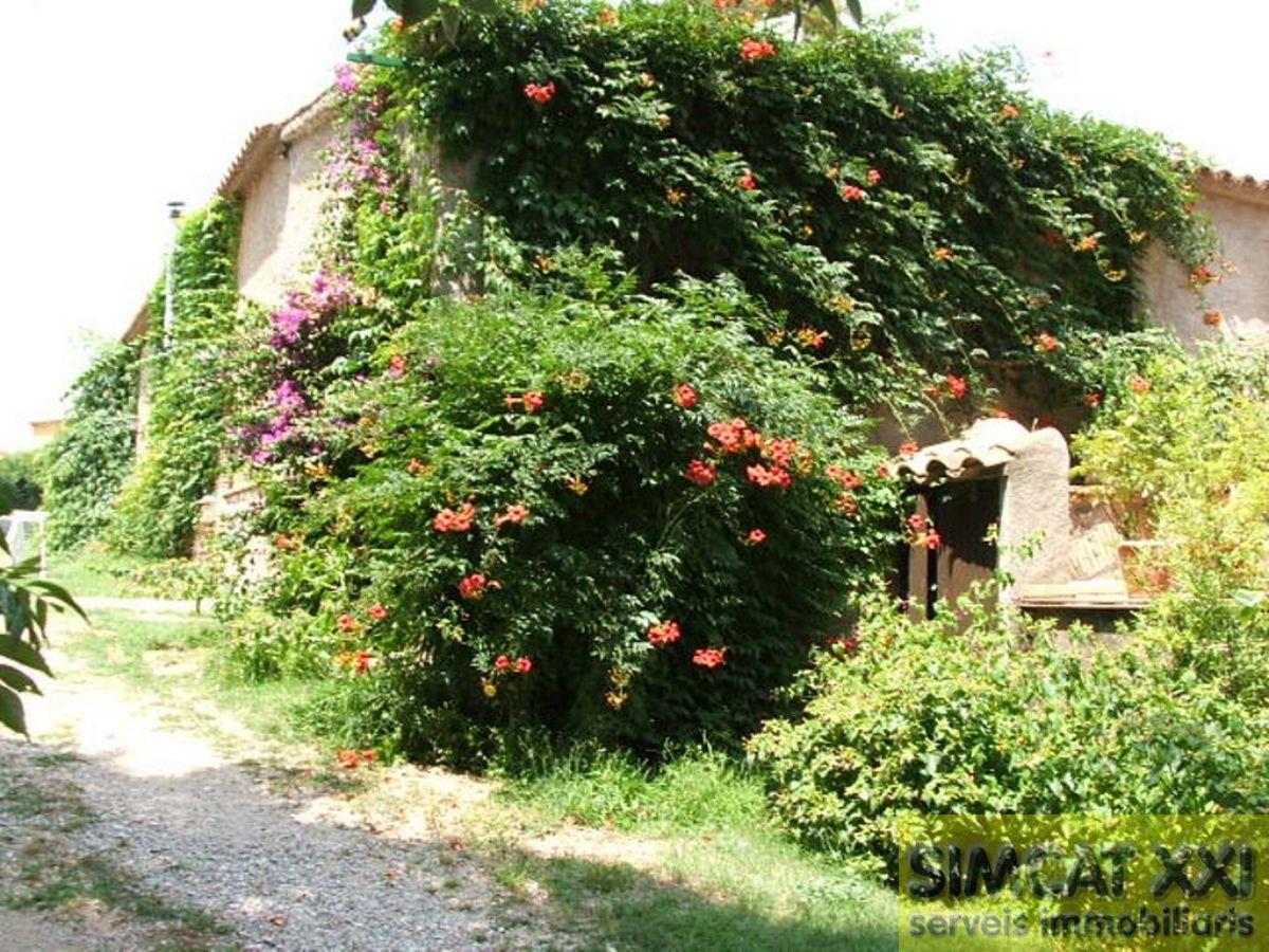 Vente de maison dans Borrassà