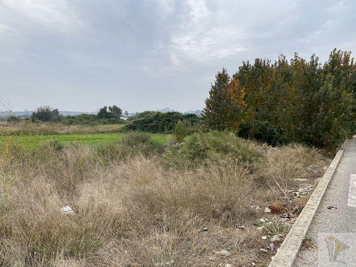 For sale of land in Archena