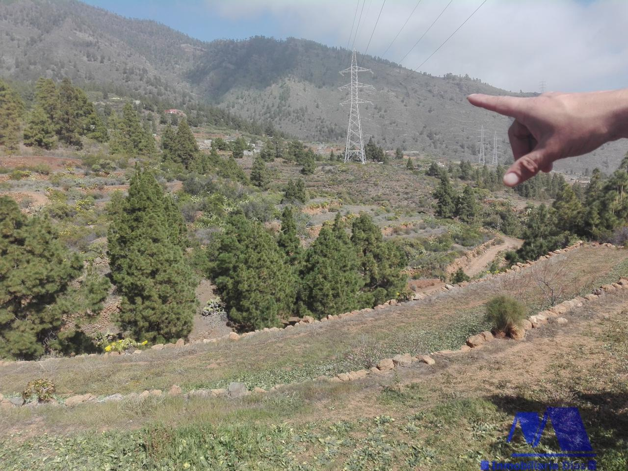 For sale of land in Candelaria