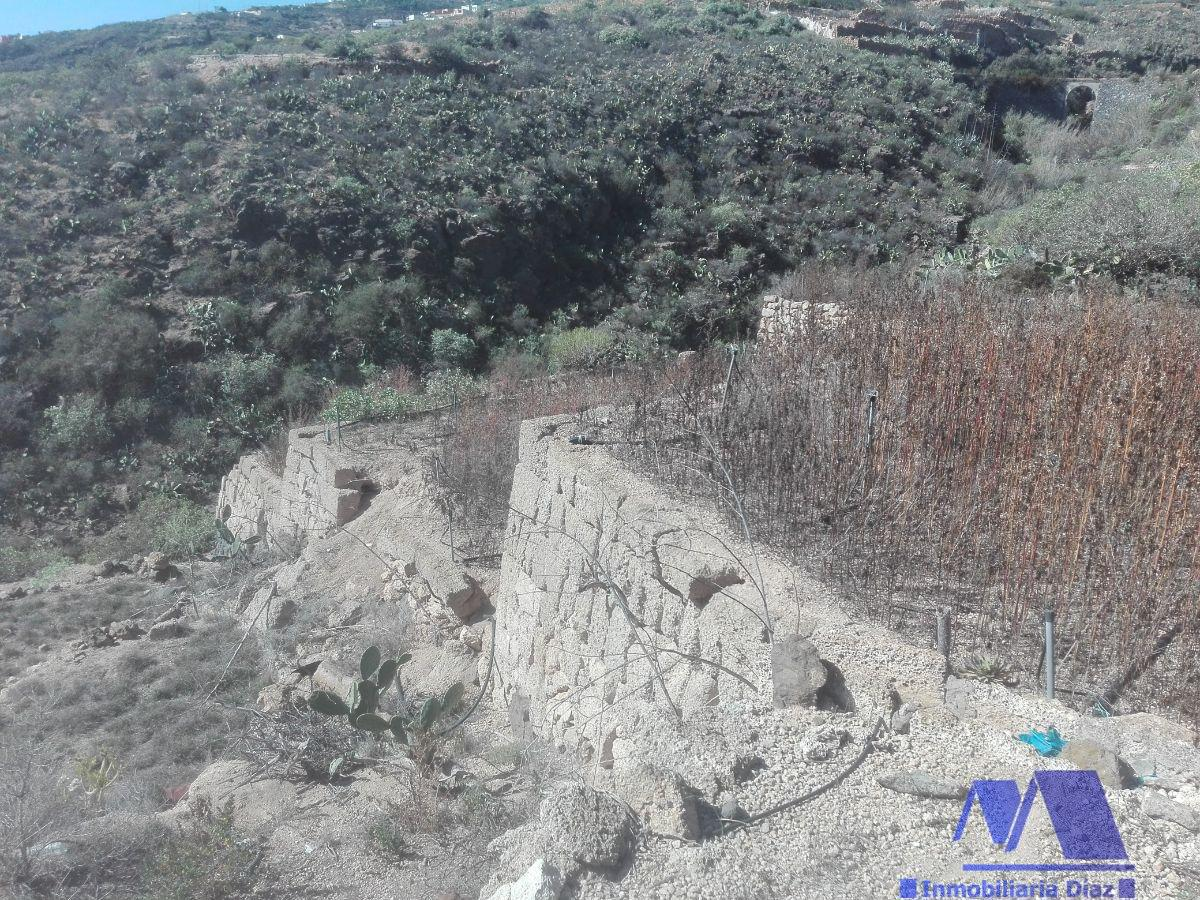 For sale of rural property in Candelaria